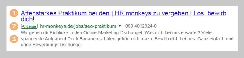Google Snippet für Google Ads
